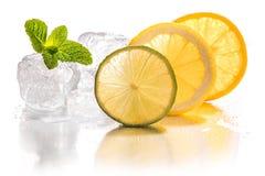 Ice cubes, lime, lemon and orange Stock Photos