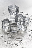 Ice cubes melting Stock Photography