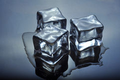 Ice Cubes Melting on Glass Stock Image