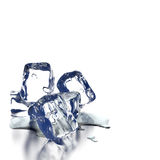 Ice Cubes. Melting ice cubes with water on a white background Stock Image