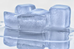 Ice cubes. That melts on the board Stock Photos