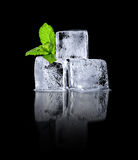 Ice cubes with mint green Royalty Free Stock Images