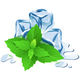 Ice cubes with mint isolated on white Royalty Free Stock Photography