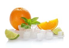 Ice cubes, oranges, mint and lime slices Stock Image