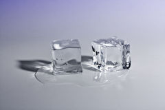 Ice cubes over color background Stock Image