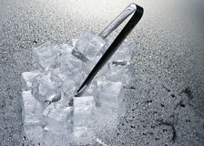 Ice cubes over wet background Royalty Free Stock Images