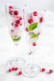 Ice cubes with red berries and mint in glasses on white background Stock Images