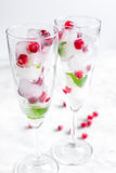 Ice cubes with red berries and mint in glasses on white background Royalty Free Stock Photo