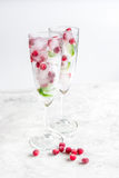 Ice cubes with red berries and mint in glasses on white background Royalty Free Stock Photography