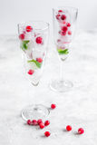 Ice cubes with red berries and mint in glasses on white background Royalty Free Stock Photos