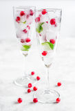 Ice cubes with red berries and mint in glasses on white background Stock Photos