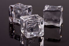 Ice cubes. Reflected on a black surface Royalty Free Stock Photos