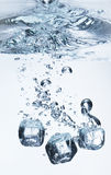 Ice cubes in water Royalty Free Stock Photography