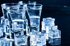 Ice cubes water shiny surface drops clean royalty free stock image
