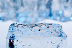 Ice cubes with waterdrops Stock Images
