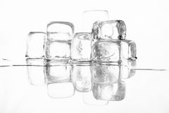 Ice cubes on white Royalty Free Stock Photo