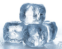 Ice cubes on white Stock Photography