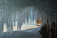 Ice curtain of icicles. Stock Photography