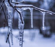 Ice Day of winter. Day where we have all the time, rain, snow, sleet and branches wrapped in ice Stock Photos
