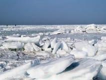 Ice desert Stock Images