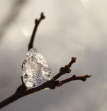 Ice diamond Royalty Free Stock Photo