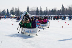 Ice Dragon Boat Racing. OTTAWA - FEB 18: Ice dragon boat racing held in North America for the first time in Ottawa, Canada on February 18, 2017 on Dow`s Lake Stock Photos
