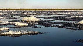 Ice drift on the big river stock video footage