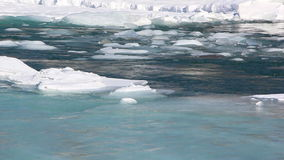 Ice drift on the turquoise river in the spring. Katun River, Altai, Russia stock footage