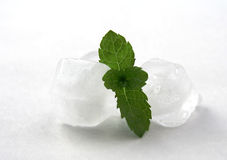Ice for drink. Ice and mint on white Royalty Free Stock Photos
