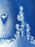 Ice drop Stock Photography