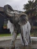Ice elephant stock photography