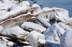 Ice encrusted logs shore of Lake Ontario Stock Photography