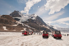Ice Explorers on icefield Royalty Free Stock Photo