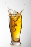 Ice falling into beer glass with splash  Royalty Free Stock Images