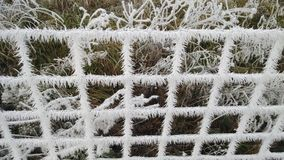 Ice on fence Royalty Free Stock Photo