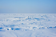 Ice field Royalty Free Stock Images