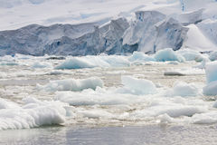 Ice field along Antarctica coastline Royalty Free Stock Photography