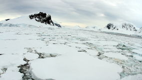 Ice field in Antarctica stock footage