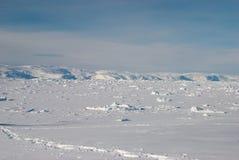 Ice field in Greenland. Sunset on Sermilik fjord's ice field in Greenland Royalty Free Stock Photography