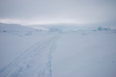Ice field in Greenland Royalty Free Stock Photography