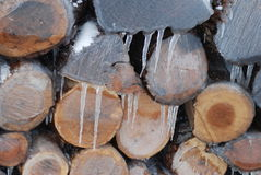 Ice on firewood Royalty Free Stock Image