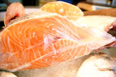 Ice fish meat Stock Photos