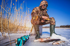 Ice fisherman with pike caught on a tip up Stock Photos