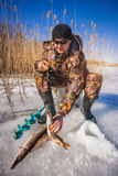 Ice fisherman with pike caught on a tip up Stock Image