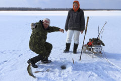 Ice Fishing. Two fishermen take out the fish from the hole royalty free stock photo
