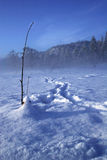Ice fishing. Footprints in the snow leading to ha hole in the ice made for fishing Royalty Free Stock Photography