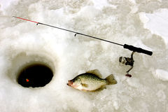 Ice fishing for crappie Royalty Free Stock Photos