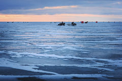 Ice fishing for smelts Stock Image