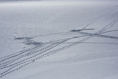 Ice Fishing tracks. Ice fishermen have gone away. Ice may be getting thin Royalty Free Stock Photography