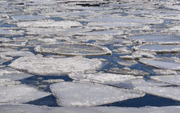 Ice floating on a lake Stock Photography